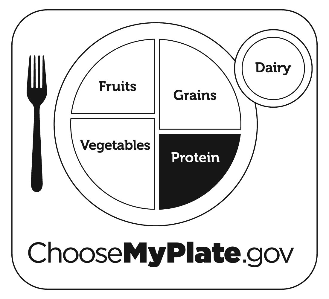 Myplate graphic resources jpg jpg jpg jpg jpg pronofoot35fo Image collections